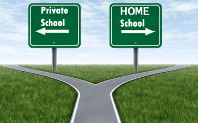 Private vs Homeschooling – Know your Options